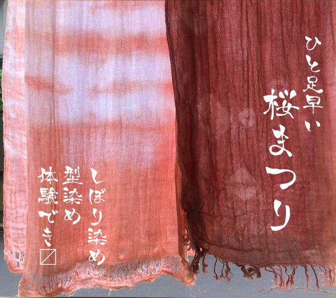 桜まつりKV.jpg